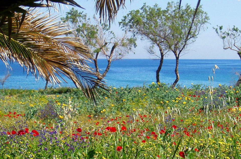 Climate in Crete